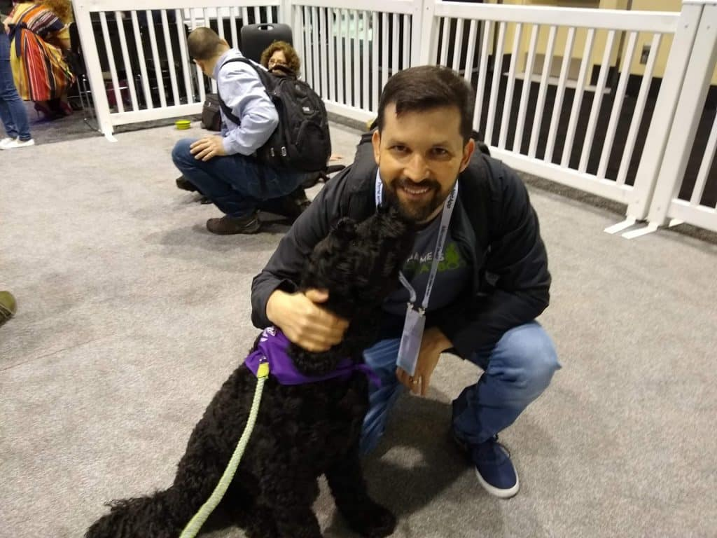 microsoft build 2019 dog